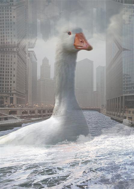 goose-monicam-web